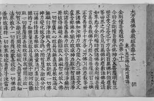 華厳経 巻第十五